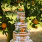 torta-nuziale-con-agrumi