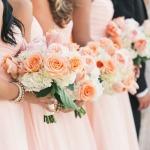 matrimonio_albicocca